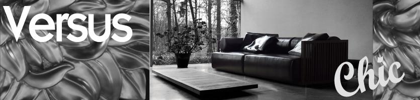 Ultra Modern Chic Furniture