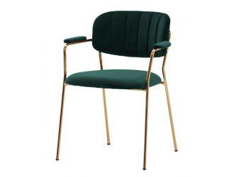 Modrest Clyde Modern Green Dining Chair (Set of 2)