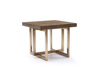 Modrest Pike Modern Elm & Antique Brass End Table